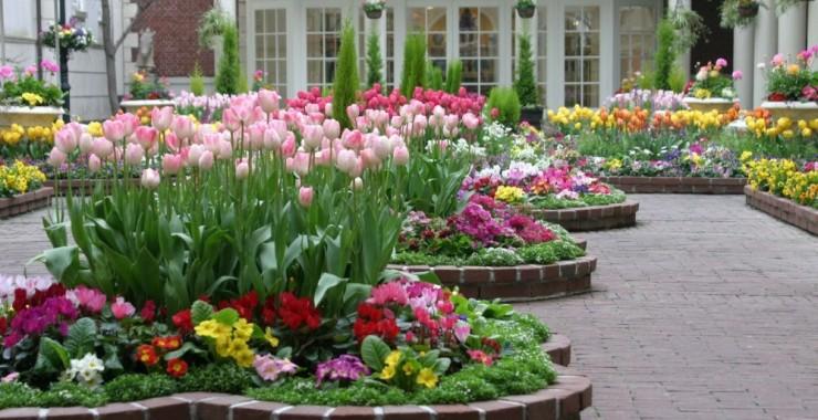 Aprendé jardinería y diseño