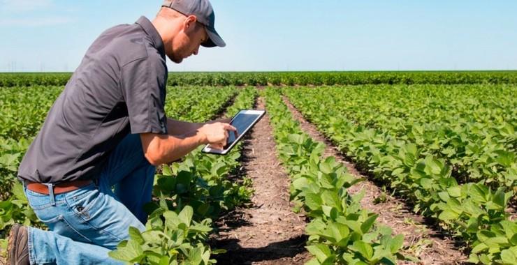 Webminar sobre internet y producción agropecuaria