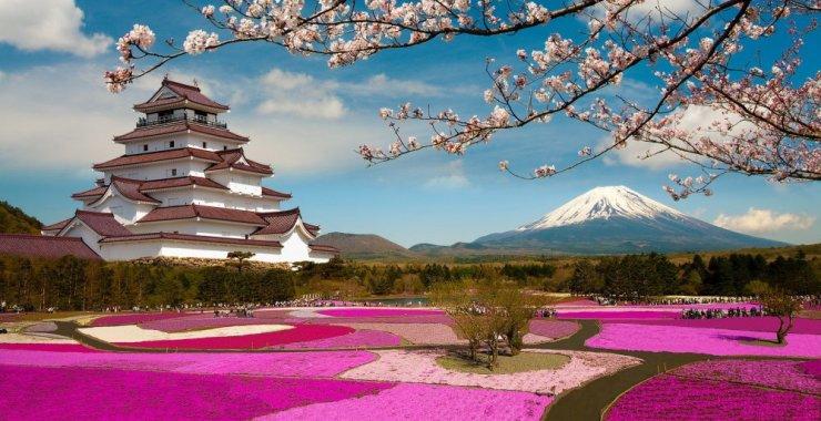Informate sobre becas que permitirán continuar tus estudios en Japón