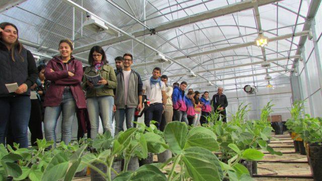 Investigan el nivel de alfabetización ambiental en estudiantes de Agronomía