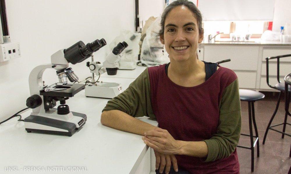 Investigan a los pequeños mamíferos del Chaco Árido