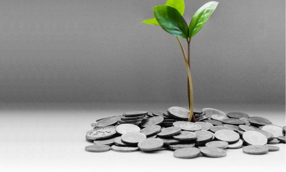 Ciclo de encuentros/reflexiones virtuales sobre economía y sustentabilidad