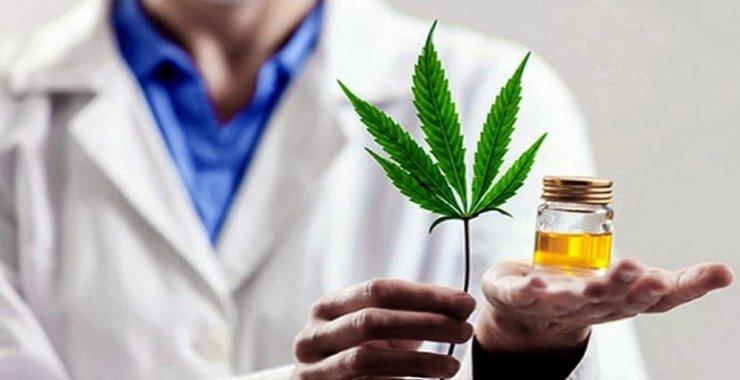 Realizarán el primer Congreso Integral de Cannabis Medicinal